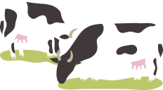 cow-group-1